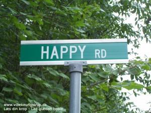 Glæden som din indre GPS