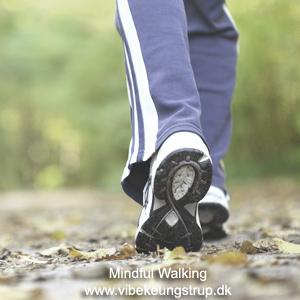 Mindful walking | Vibeke Ungstrup, terapeut og clairvoyant, Hillerød, Nordsjælland